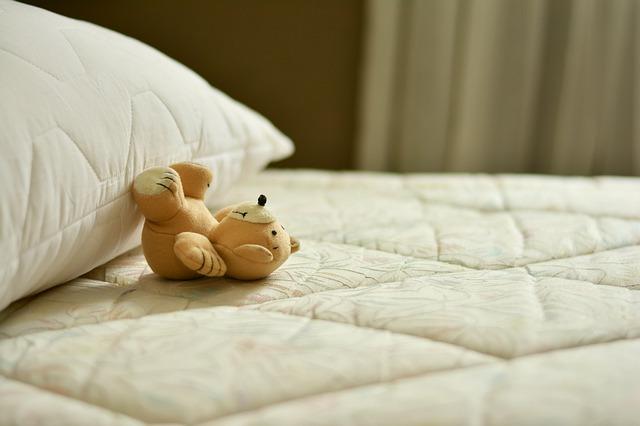 הדברת פשפשי המיטה