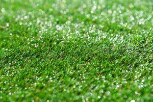 ריח שתן בדשא סינטטי